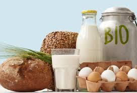 dieta bio2