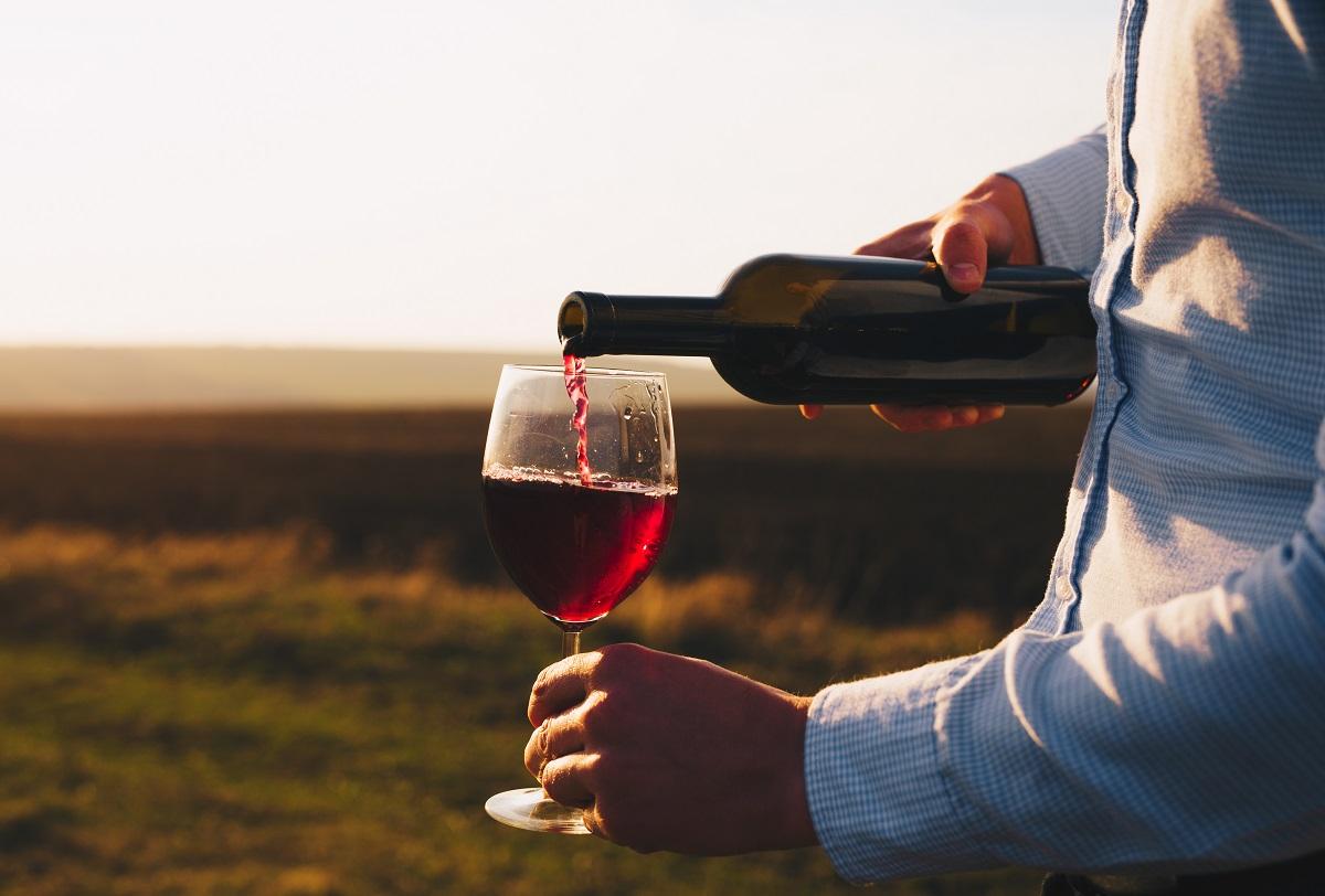 vino-taurasi